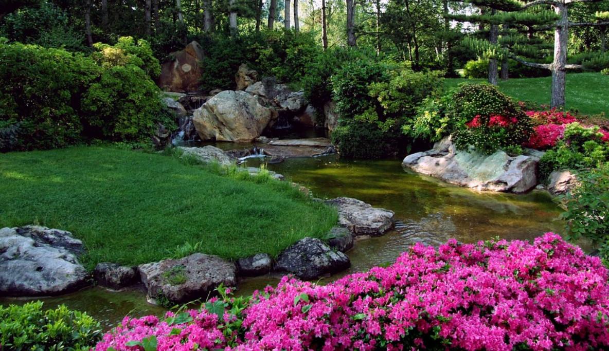 Conseils pour créer un beau jardin